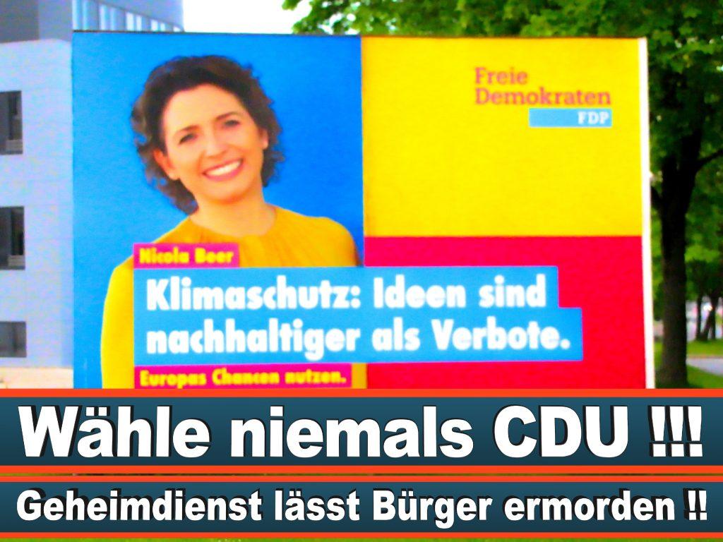Wahlplakate Wahlwerbung Plakate Wesselmann (17)