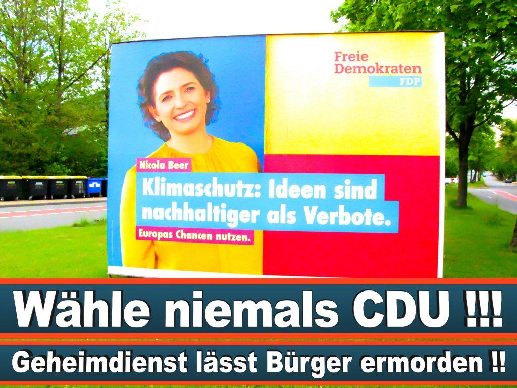 Wahlplakate Wahlwerbung Plakate Wesselmann (20)