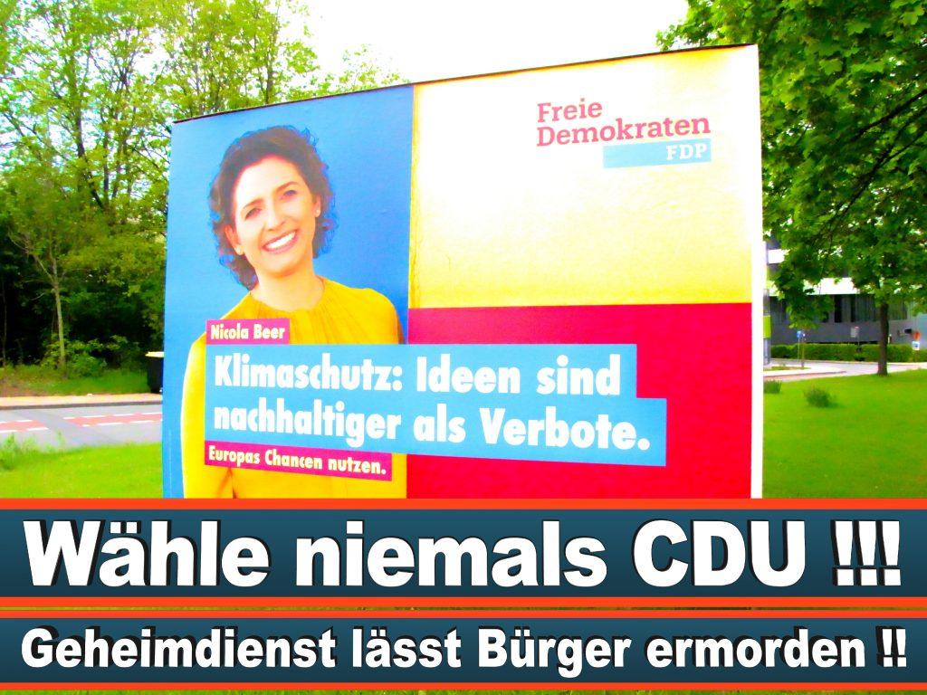 Wahlplakate Wahlwerbung Plakate Wesselmann (21)