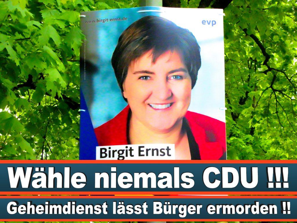 Wahlplakate Wahlwerbung Plakate Wesselmann (22)