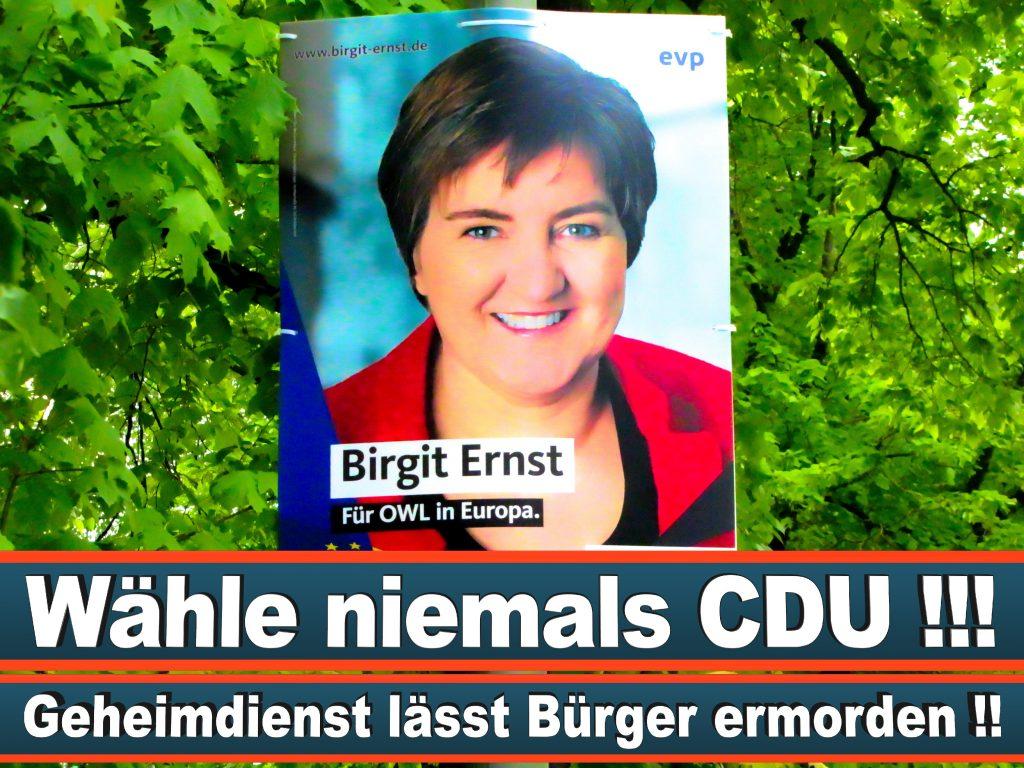 Wahlplakate Wahlwerbung Plakate Wesselmann (23)