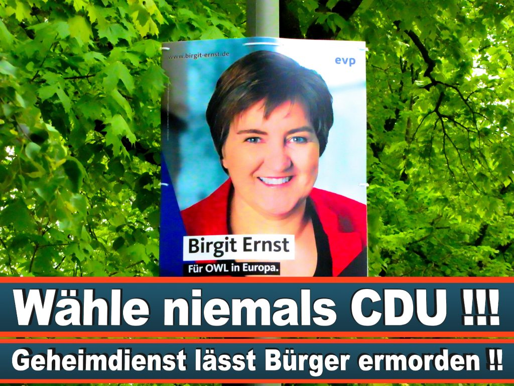 Wahlplakate Wahlwerbung Plakate Wesselmann (24)