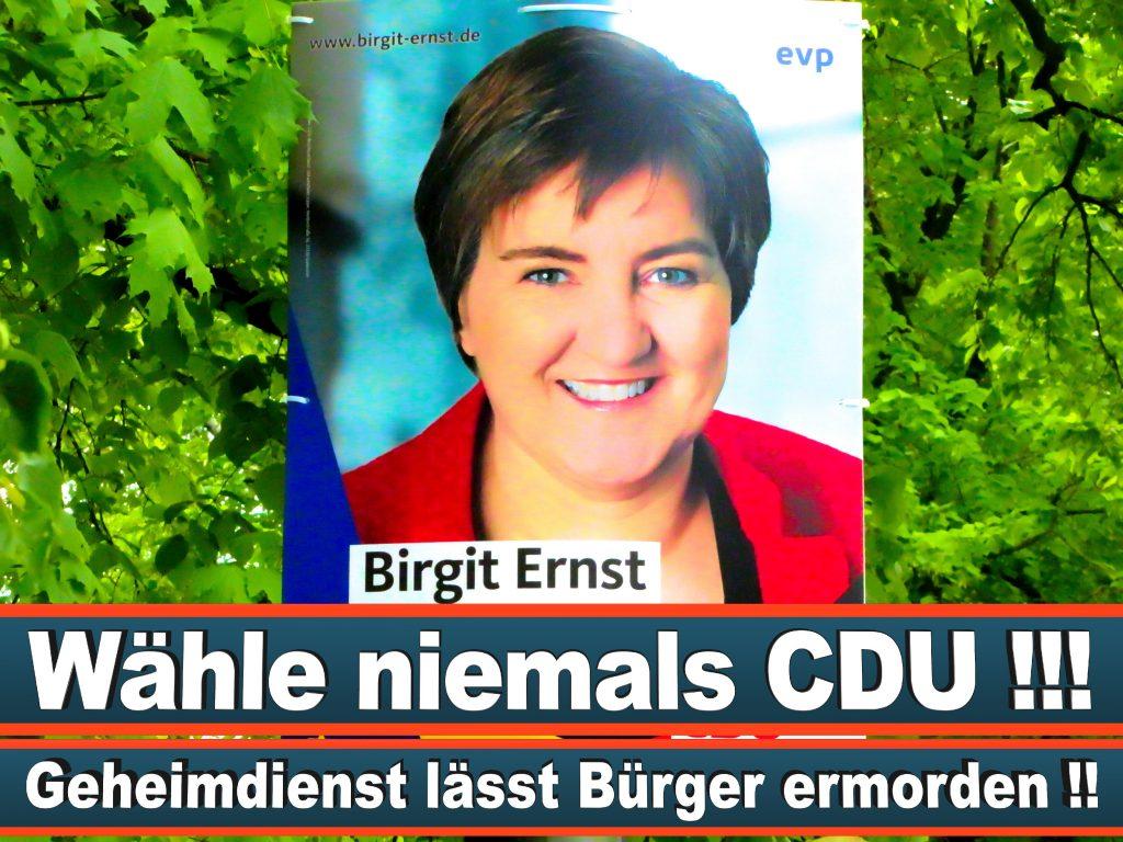 Wahlplakate Wahlwerbung Plakate Wesselmann (25)