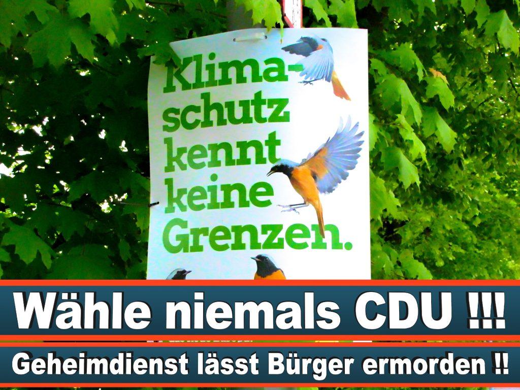 Wahlplakate Wahlwerbung Plakate Wesselmann (26)