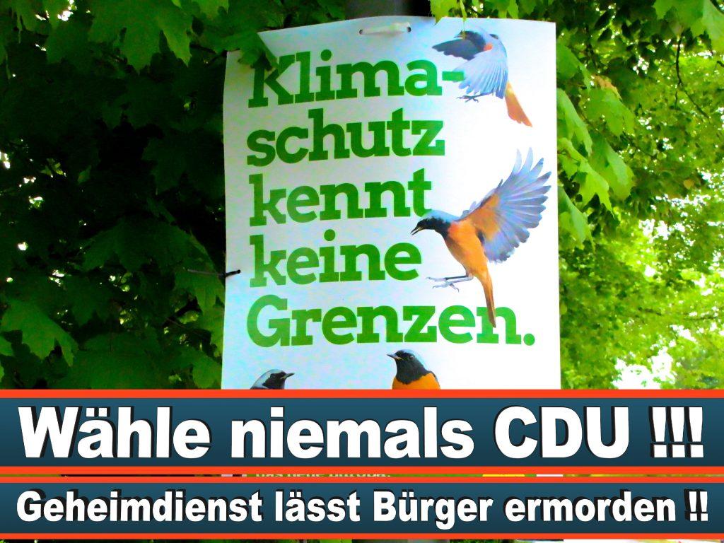 Wahlplakate Wahlwerbung Plakate Wesselmann (27)