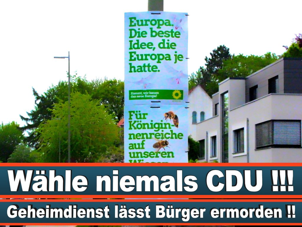 Wahlplakate Wahlwerbung Plakate Wesselmann (28)