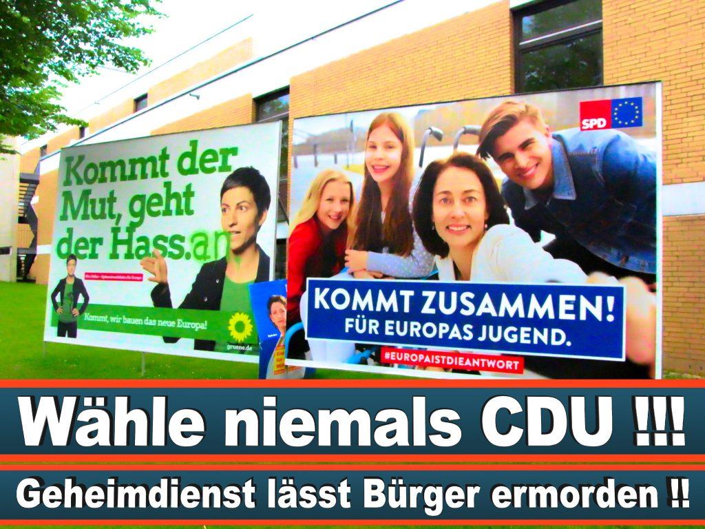 Wahlplakate Wahlwerbung Plakate Wesselmann (29)