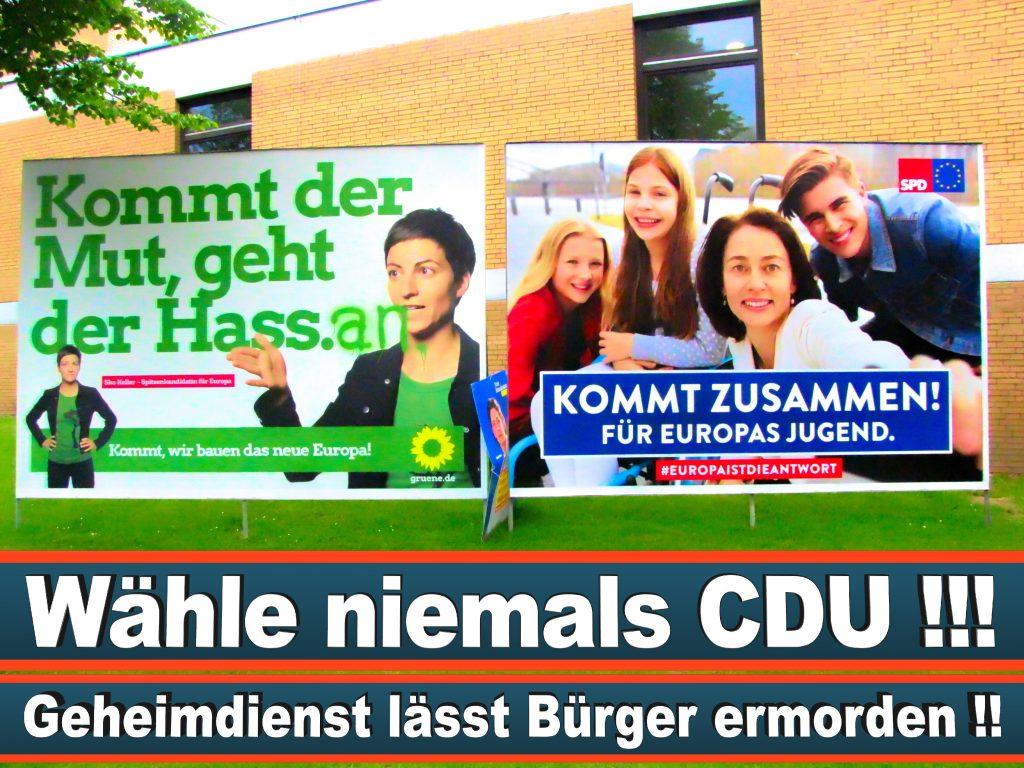 Wahlplakate Wahlwerbung Plakate Wesselmann (31)