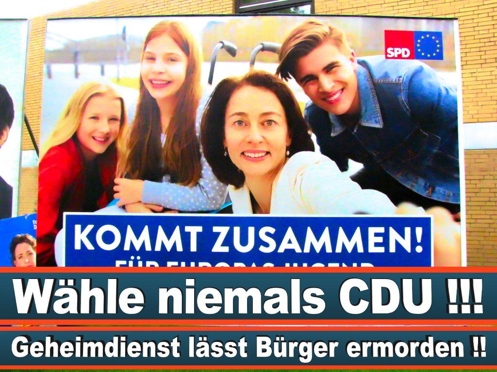 Wahlplakate Wahlwerbung Plakate Wesselmann (33)