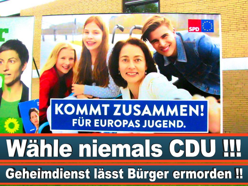 Wahlplakate Wahlwerbung Plakate Wesselmann (34)
