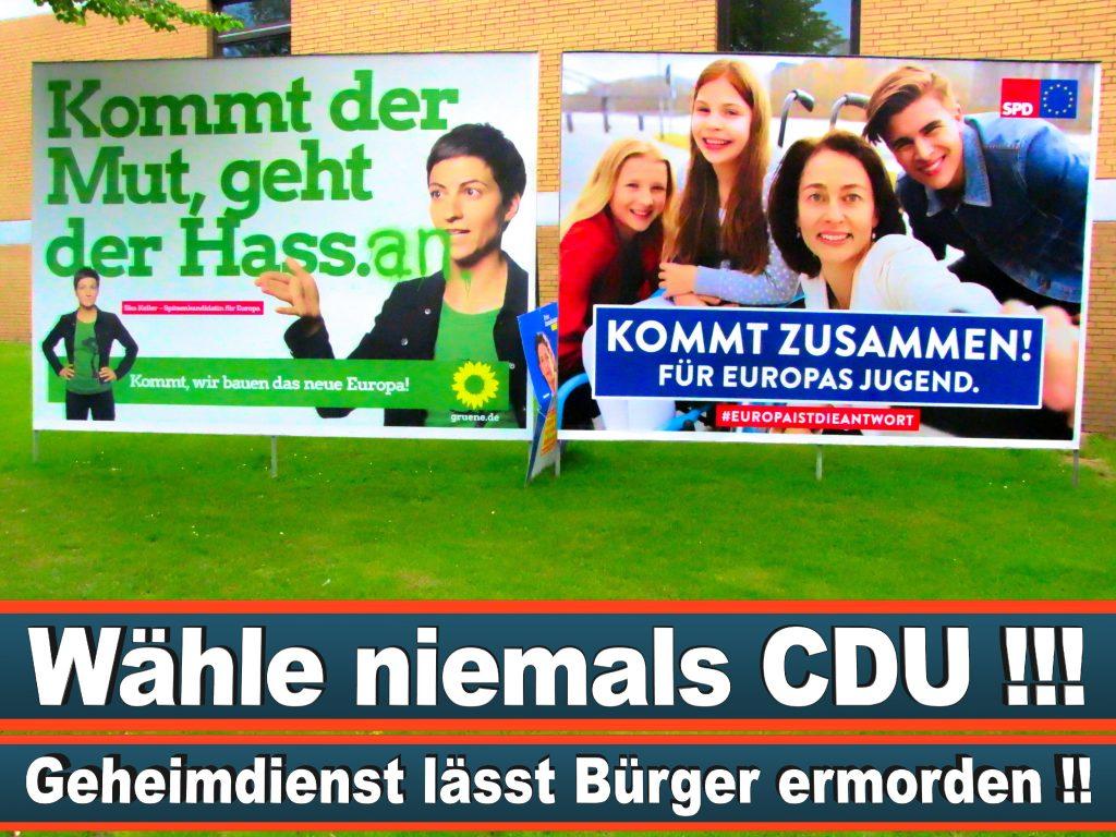 Wahlplakate Wahlwerbung Plakate Wesselmann (37)