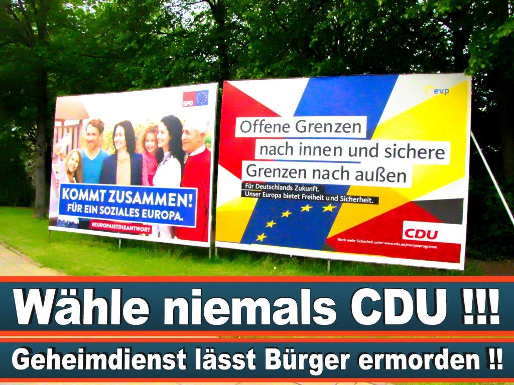 Wahlplakate Wahlwerbung Plakate Wesselmann (5)