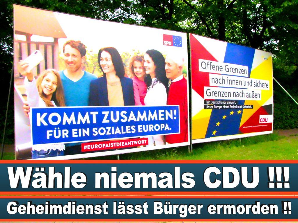 Wahlplakate Wahlwerbung Plakate Wesselmann (8)