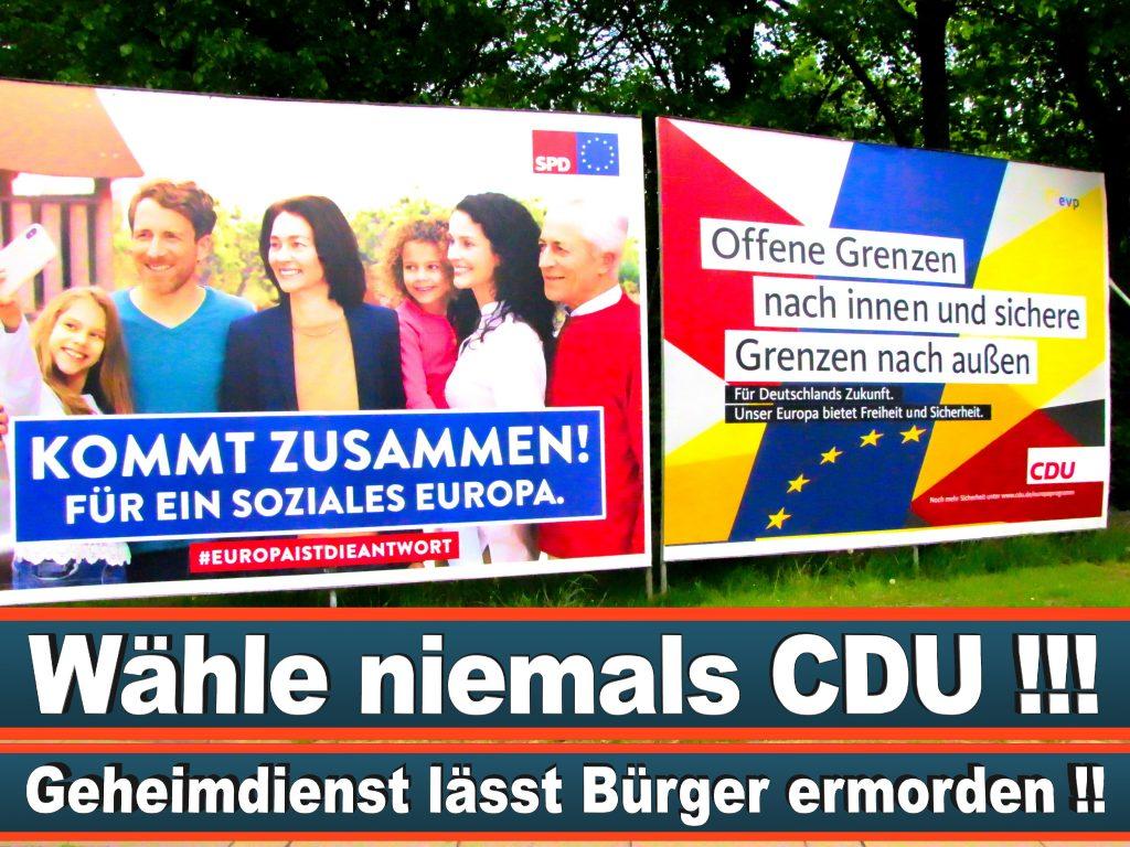 Wahlplakate Wahlwerbung Plakate Wesselmann (9)